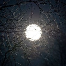 motif_lune